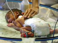 Младенцы изначально знают, как устроен мир. Младенцы изначально знают, как устроен мир