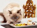 Оригинальные закуски к новогоднему столу