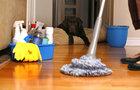 25 лучших домашних средств для уборки. Экономь деньги на бытовой химии☝